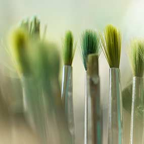 Selection of paint brushes for painting in green