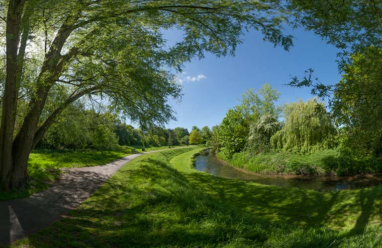 Panoramic photographer Sussex Kent Farnham Farn Park image